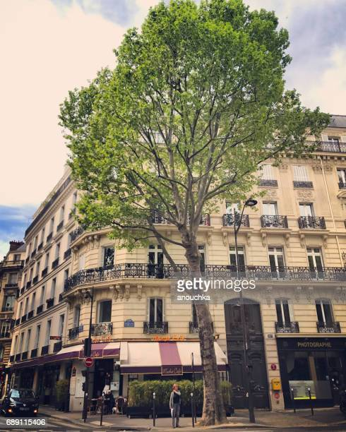 サンジェルマン大通り、パリ、フランス - サンジェルマンデプレ ストックフォトと画像