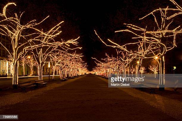 boulevard with illuminated trees, berlin, germany - boulevard stock pictures, royalty-free photos & images