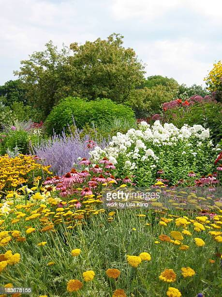 Bountiful perennial flower garden