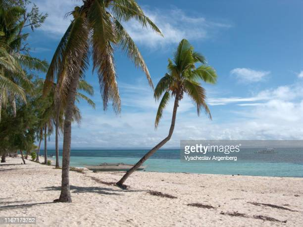 bounty beach, tropical lagoon, malapascua island, philippines - argenberg stock pictures, royalty-free photos & images