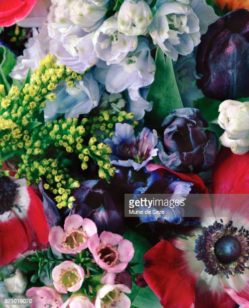 bouquet close up - baroque stock pictures, royalty-free photos & images