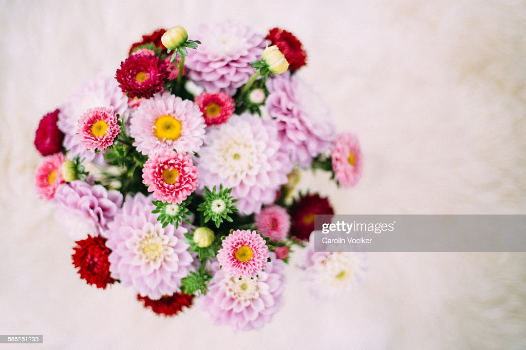 Bouquet of dahlias : Stock Photo