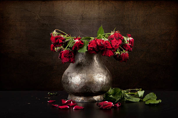 Bouquet Of Dead Red Roses In Silver Vase Grunge Background