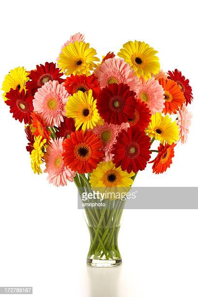 bouquet of different colored gerbera - gerbera daisy stock pictures, royalty-free photos & images