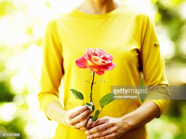 bouquet of flowers - yellow roses stock photos and pictures