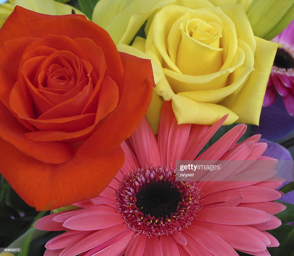Bouquet Of Flowers High-Res Stock Photo - Getty Images