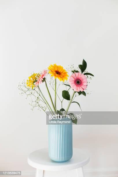 bouquet de marguerite de gerbera - bouquet de fleurs photos et images de collection
