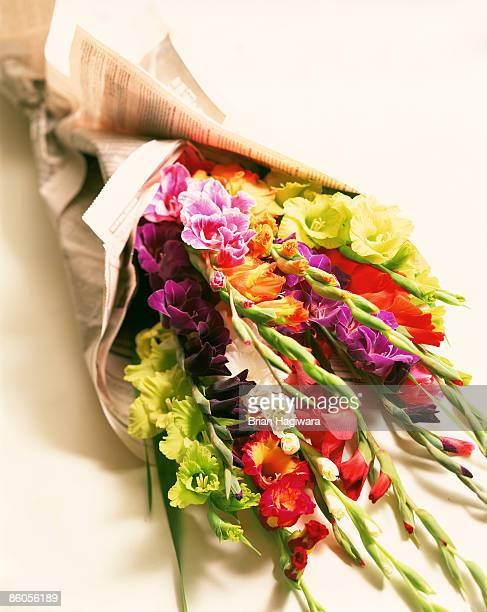 bouquet of gladiolas - gladiolus stock pictures, royalty-free photos & images