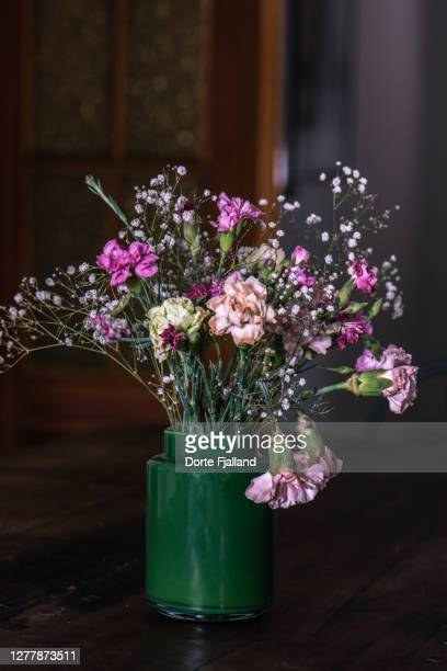 a bouquet of gypsophilias and pink carnations against a dark background - dorte fjalland fotografías e imágenes de stock