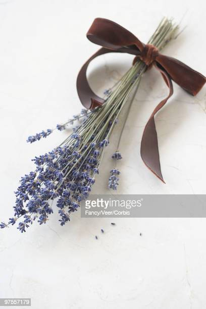 Bouquet of lavender tied with ribbon