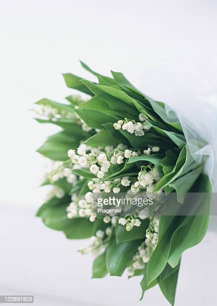 bouquet of lily of the valley - bouquet de muguet fotografías e imágenes de stock