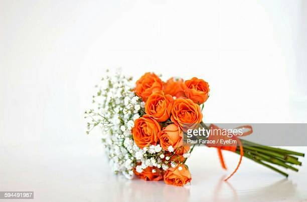 Bouquet Of Orange Roses Against White Background