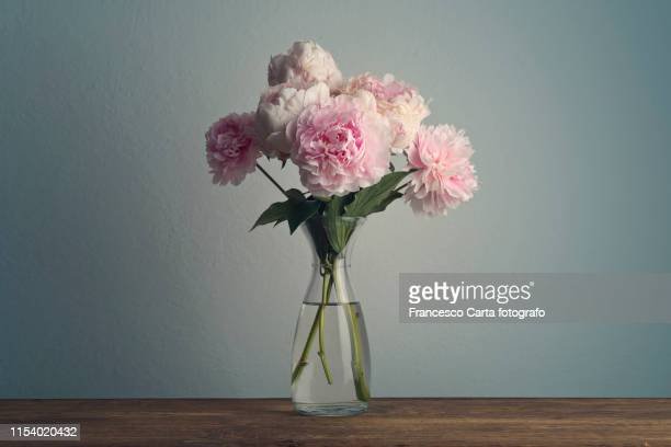 bouquet of peonies in vase - peony stock pictures, royalty-free photos & images