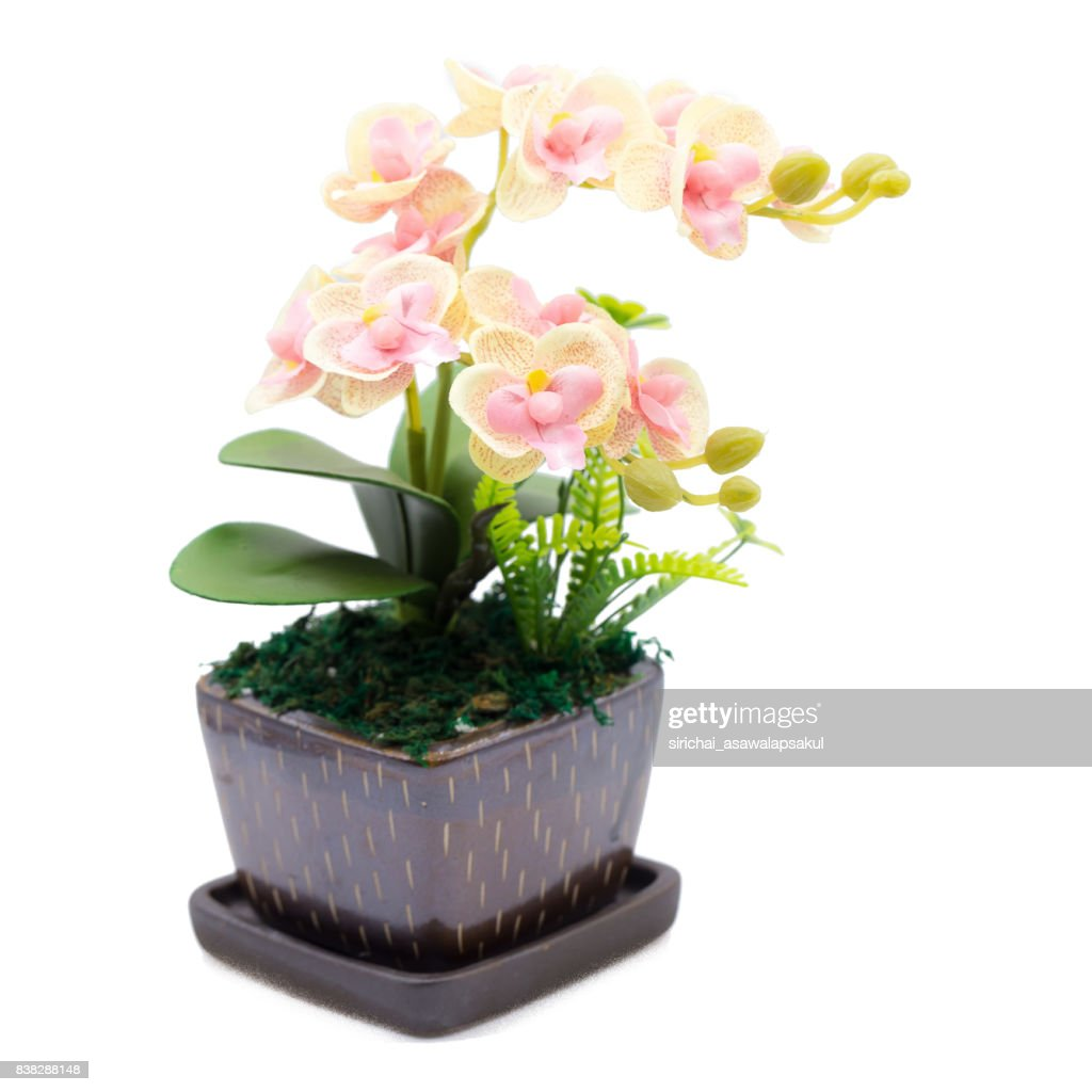 Bouquet Of Plastic Flowers Plastic Flowers Isolated On White