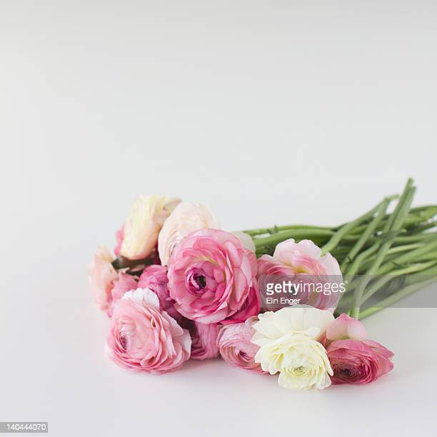 Bouquet of ranunculus