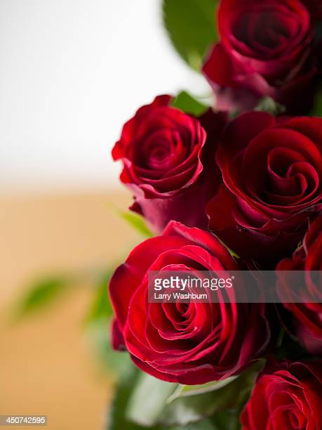 A bouquet of red roses, high angle view, close-up