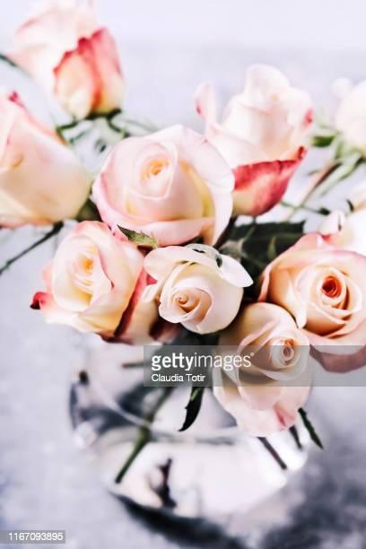 a bouquet of roses in a glass vase on white background - mazzo di rose foto e immagini stock