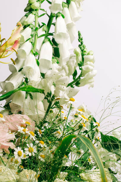 Bouquet of tropical and extraordinary flowers on gray background. Gloriosa superba, Digitalis (foxgloves), Ranunculus, Chamomiles and grass. Close-up
