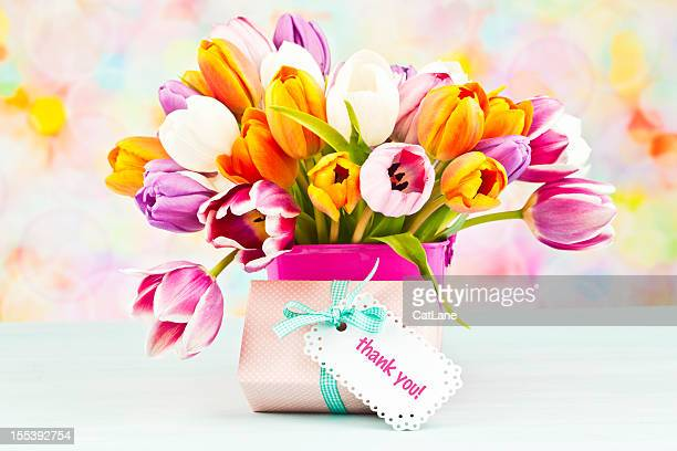 Strauß Tulpen und danke Geschenk
