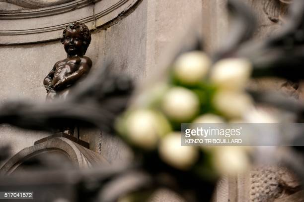 A bouquet of tulips lies next to the Manneken Pis statue in Brussels on March 23 a day after blasts hit the Belgian capital World leaders united in...
