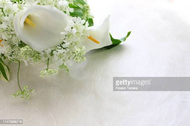bouquet of white flowers - calla lilies white stock pictures, royalty-free photos & images