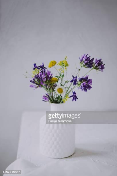 bouquet of wildflowers in vase - fiore di campo foto e immagini stock