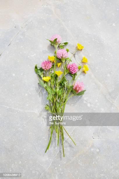 bouquet  of wildflowers with buttercup and clover on a stone, tranquil scene - mazzo di fiori foto e immagini stock