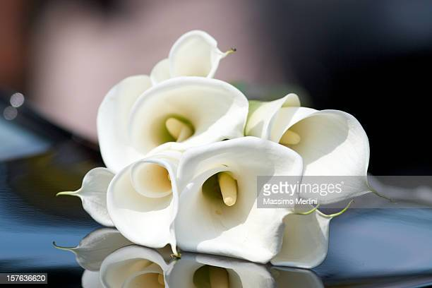 bouquet - calla lily stock pictures, royalty-free photos & images