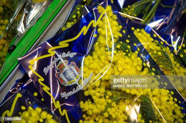 Bouquets of Mimosa flowers with the coat of arms of the selfproclaimed principality Seborga are pictured in Seborga northwestern Italy on February 5...
