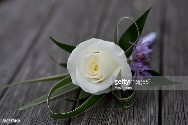 A boutonniere, button hole flower, white rose.