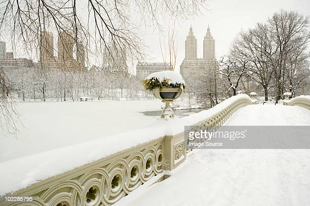 Bow bridge and central park in the snow