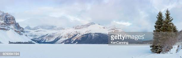 bow lake and mountains in winter along the icefields parkway in banff national park, alberta canada - canadian rockies stock pictures, royalty-free photos & images