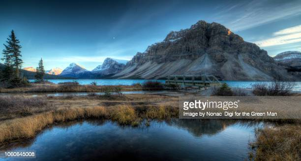 bow lake - bow river stock pictures, royalty-free photos & images