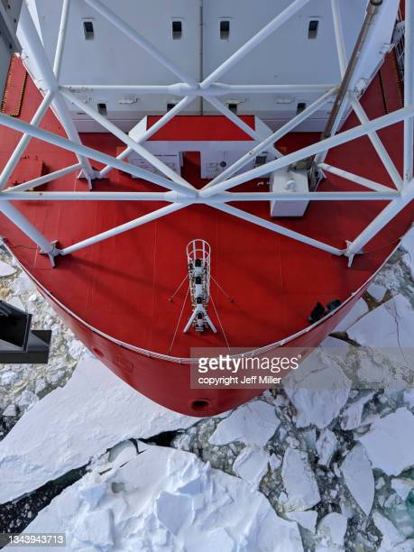bow of an icebreaker cutting through sea ice, southern ocean, antarctica. - pack ice stock pictures, royalty-free photos & images