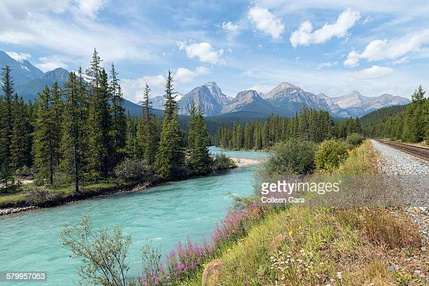 Bow river and mountain range