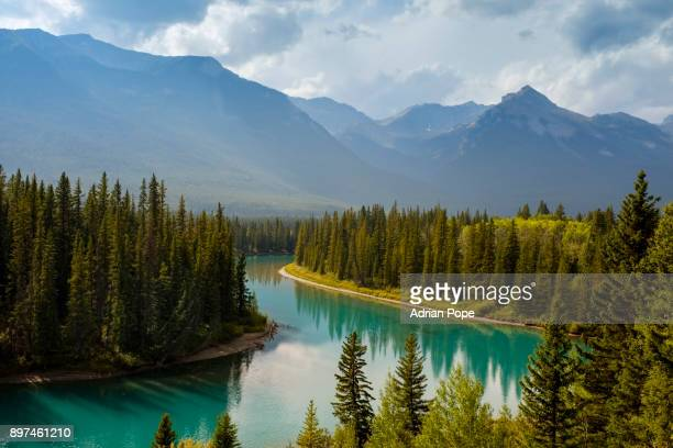 bow river, canadian rockies - lake louise stock pictures, royalty-free photos & images