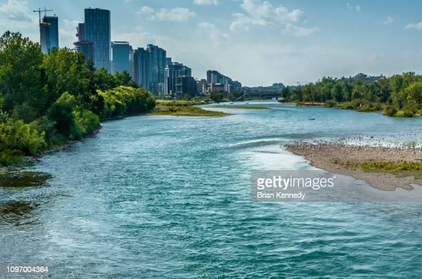 bow river summer - bow river stock pictures, royalty-free photos & images