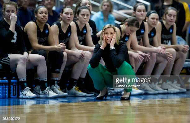 Bowdoin head coach Adrienne Shibles during the Division III Women's Basketball Championship held at the Mayo Civic Center on March 17 2018 in...