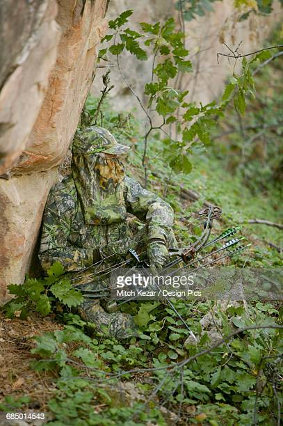 bowhunter hunting turkey in spring - turkey hunting stock photos and pictures