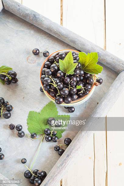 Bowl of black currants with leaves on a tray