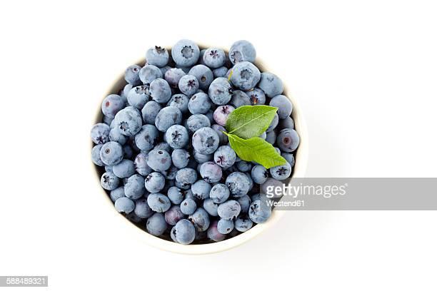 Bowl of blueberries on white ground