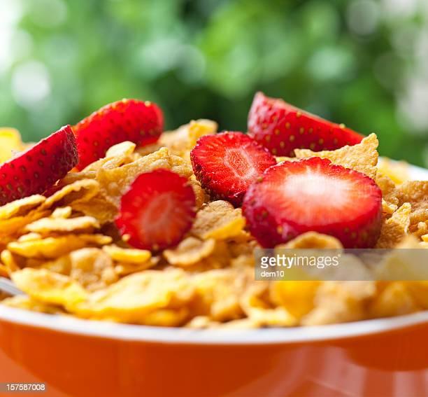 Schüssel mit Müsli und frischen Erdbeeren