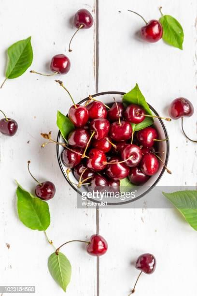 bowl of cherries on white wood - kirsche stock-fotos und bilder