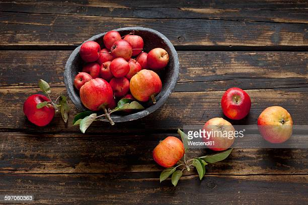 Bowl of different sorts of red apples on dark wood