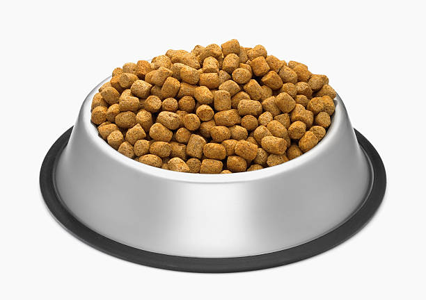 bowl of dog kibble picture id88307254?k=20&m=88307254&s=612x612&w=0&h=IrAcerSf9LyEst0Fm8IXXD4I tiPm3VKgjm729cW7Y0=