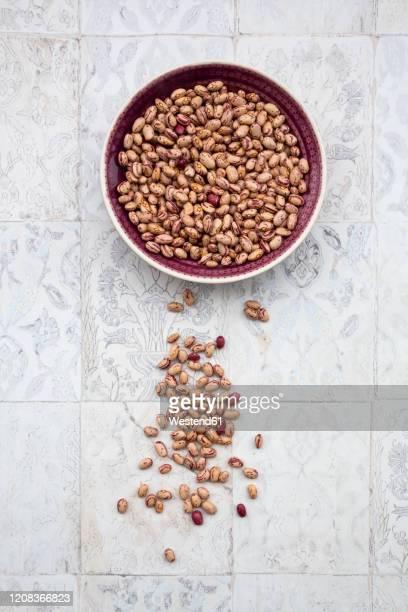 bowl of dried pinto and borlotto beans lying on tiled surface - pinto bean - fotografias e filmes do acervo