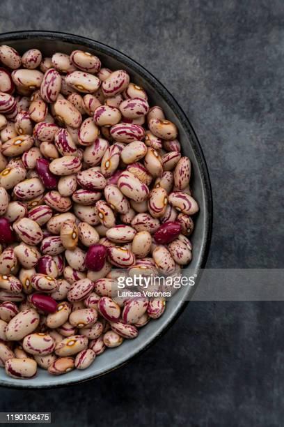 bowl of dried pinto beans - larissa veronesi stock-fotos und bilder