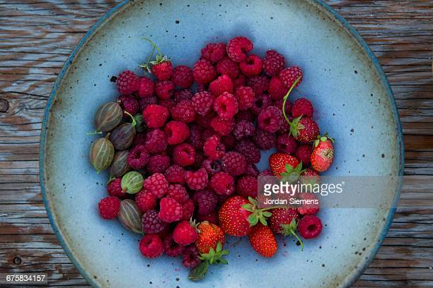 A bowl of fresh berries from a garden