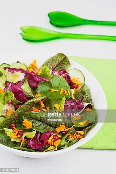 Bowl of fresh salad, close up
