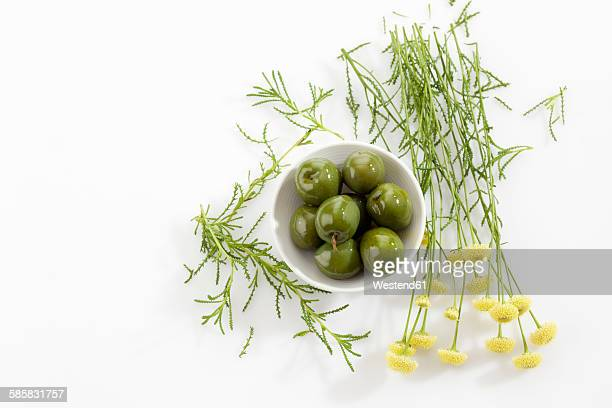 bowl of green olives and green santolina - green olive stock photos and pictures